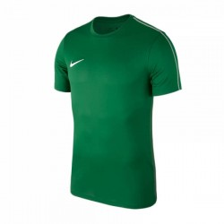 Футболка тренировочная Nike Dry Park 18 SS Top AA2046-302 зеленая