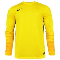 Вратарская кофта Nike CLUB GEN LS GK  678164-775