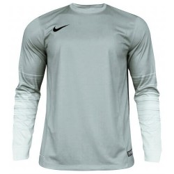 Вратарская кофта Nike CLUB GEN LS GK  678164-043