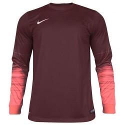 Вратарская кофта Nike CLUB GEN LS GK 678164-634