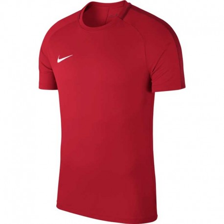 Футболка Nike Dry Academy 18 893693-657