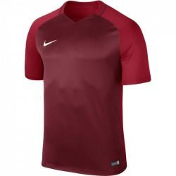 Футболка игровая Nike Dry Trophy III Jersey T-shirt 881483-677