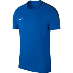 Футболка Nike Dry Academy 18 893693-463