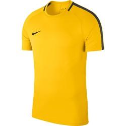 Футболка Nike Dry Academy 18 893693-719
