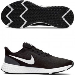 Кроссовки Nike Wmns Revolution 5 BQ3207-002