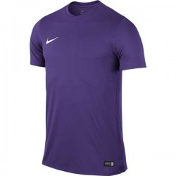 Футболка игровая Nike Park VI Jersey 725891-547